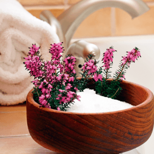 epsom_salt, Epsom Salt Benefits